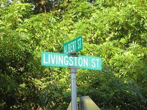 lot 1G Livingston Street