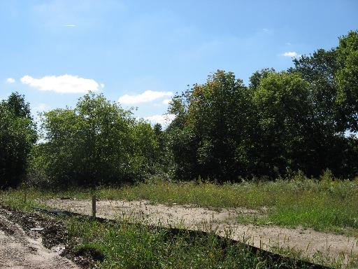 1334 Bluebell Lane Batavia, Il